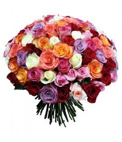 101 роза (Эквадор) Микс