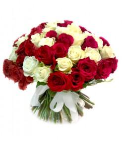 "101 ""Красно-белая"" роза"