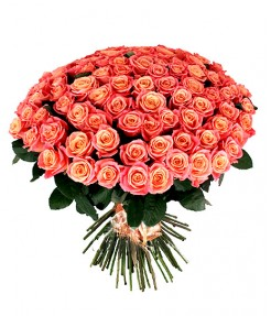 """Мисс Пигги """"101 роза"""""""
