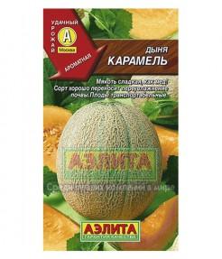 Дыня Карамель