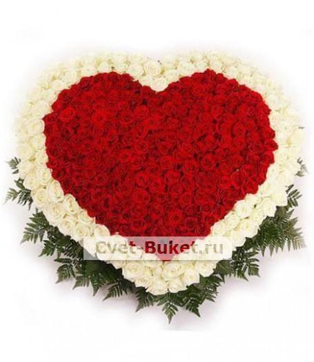 201 роза Сердце