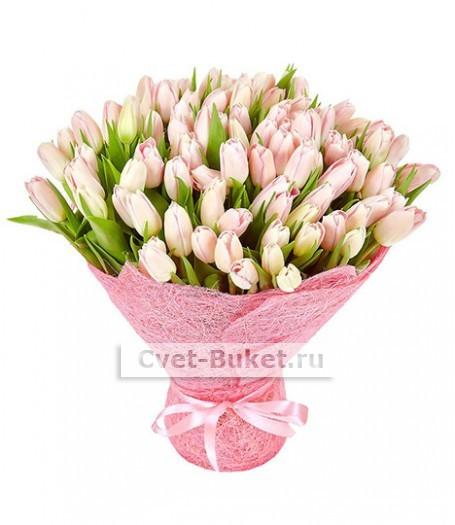 Букет тюльпанов 16