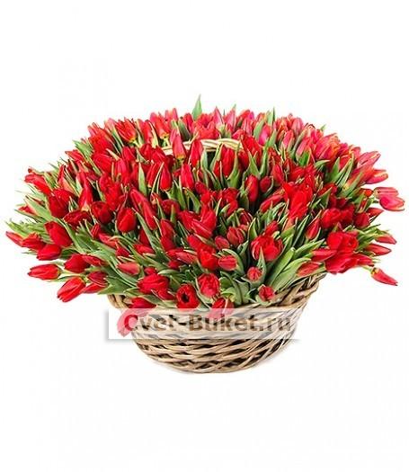 Букет тюльпанов 32
